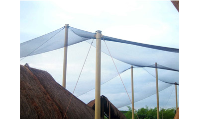 Some Points Need to be Considered When Using Stainless Steel Cable Mesh to Build Large Aviaries